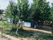 Obyekt - Şabran - 630 m² (4)