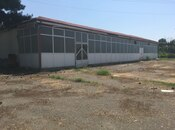 Obyekt - Ağdaş - 15000 m² (5)