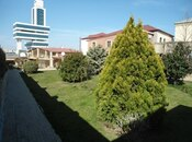 Torpaq - Badamdar q. - 25 sot (8)