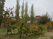 Torpaq - Novxanı q. - 12 sot (2)