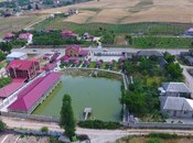 Obyekt - Şamaxı - 34000 m² (6)