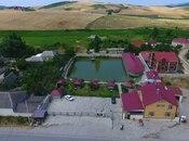 Obyekt - Şamaxı - 34000 m² (10)