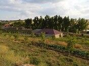 Obyekt - Şamaxı - 34000 m² (15)