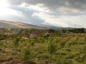 Obyekt - Şamaxı - 34000 m² (17)