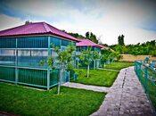 Obyekt - Şamaxı - 34000 m² (18)
