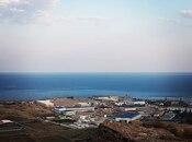 Torpaq - Badamdar q. - 15 sot (2)