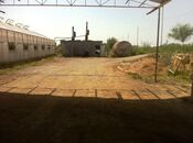 Obyekt - Salyan - 10000 m² (11)