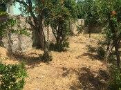 Torpaq - Yeni Ramana q. - 10 sot (7)