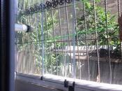 2 otaqlı yeni tikili - Biləcəri q. - 42 m² (14)