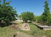Bağ - Binəqədi r. - 180 m² (14)
