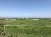 Torpaq - Şabran - 12 sot (2)