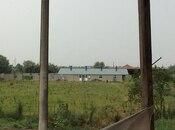 Obyekt - Sabirabad - 1200 m² (48)