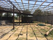 Obyekt - Sabirabad - 1200 m² (46)