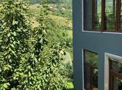 6 otaqlı ev / villa - Quba - 116 m² (11)