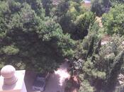 8 otaqlı ev / villa - Nəsimi r. - 900 m² (16)