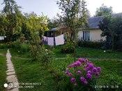 2 otaqlı ev / villa - Qəbələ - 40 m² (3)