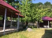 6 otaqlı ev / villa - Qəbələ - 240 m² (5)