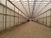 Obyekt - Qaradağ r. - 110000 m² (2)