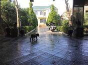 4-комн. дом / вилла - пос. Мардакан - 170 м² (33)
