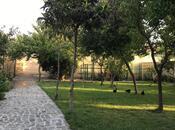 Bağ - Novxanı q. - 750 m² (6)