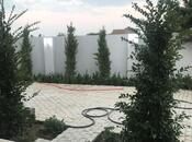 Bağ - Bilgəh q. - 300 m² (18)