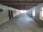 Obyekt - Neftçala - 3600 m² (21)