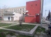 Torpaq - Şirvan - 1 sot (2)