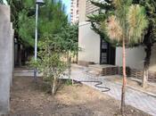 5 otaqlı ev / villa - Nəsimi m. - 200 m² (25)