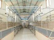Obyekt - İmişli - 3000 m² (4)