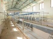 Obyekt - İmişli - 3000 m² (5)