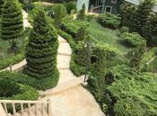 6 otaqlı ev / villa - Badamdar q. - 658 m² (20)