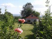 3 otaqlı ev / villa - Qəbələ - 100 m² (6)