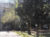 1 otaqlı köhnə tikili - Binəqədi r. - 32 m² (10)