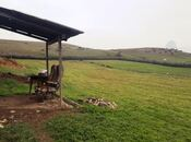 Объект - Газах - 600 м² (4)