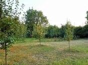 12 otaqlı ev / villa - Qəbələ - 450 m² (26)