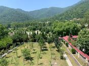10 otaqlı ev / villa - Qəbələ - 400 m² (34)