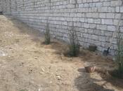 Torpaq - Mərdəkan q. - 7 sot (10)
