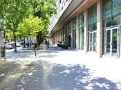 Obyekt - Ayna Sultanova heykəli  - 700 m² (2)