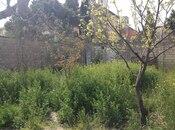 Torpaq - Badamdar q. - 3 sot (15)
