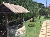 6 otaqlı ev / villa - Mərdəkan q. - 450 m² (6)