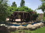 Obyekt - Abşeron r. - 500 m² (3)