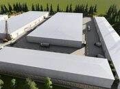 Obyekt - Abşeron r. - 25000 m² (9)