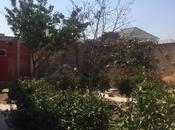 6 otaqlı ev / villa - Binə q. - 250 m² (2)