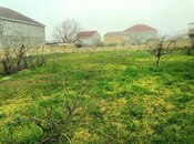 Torpaq - Novxanı q. - 10 sot (12)
