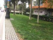 2 otaqlı köhnə tikili - Sahil m. - 55 m² (17)