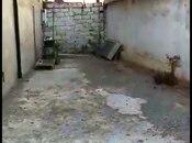 5 otaqlı ev / villa - Binəqədi q. - 300 m² (13)