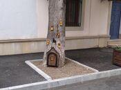 Obyekt - Sahil m. - 40 m² (8)