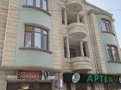 7 otaqlı ev / villa - Azadlıq Prospekti m. - 560 m² (2)