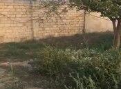 Torpaq - Badamdar q. - 13 sot (3)