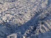 Torpaq - Neftçala - 17000 sot (6)